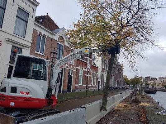 Hoff verhuur helpt u met Bomenkappen en verwijderen